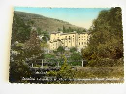 CAMALDOLI  I   (AREZZO)  TOSCANA   Non  VIAGGIATA  COME DA FOTO Acquerellata - Arezzo