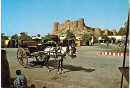 Asie - Afghanistan Taxi De Hérat Devant La Citadelle - âne - Afghanistan