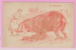 LE COCHON - Carte à Regarder Avec Un Filtre Rose Ou Rouge Pour Voir Le Dessin Coquin Caché En Dessous - Humor