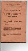 Carnet De NOURRICE - Sevreuse Ou Gardeuse - 1936 - - Sin Clasificación
