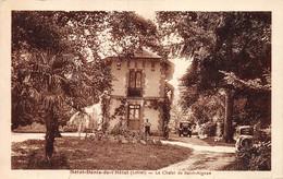 PIE-20-DEL-1411 : SAINT-DENIS DE L'HOTEL. LE CHALET DE SAINT-AIGNAN. - Otros Municipios