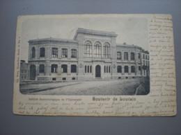 LOUVAIN  1902 - INSTITUT BACTERIOLOGIQUE DE L'UNIVERSITE - NELS SERIE 36 N°5 - Leuven