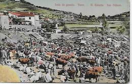 Tarjeta Postal - Feria De Ganado. Teror. G.Canaria Las Palmas - Fiere