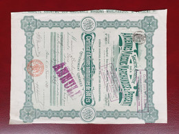 Rare Certificat 20 Actions Anc. Maisons Marchandise Persent 1901 Moins 500 Ex. - Ohne Zuordnung