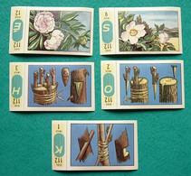 5 Images Collection NESTLE Et KOHLER Les Merveilles Du Monde Album N° 5  Séries 112 Timbres N° 1-2-3-9-12 Fleurs Arbres - Schokolade