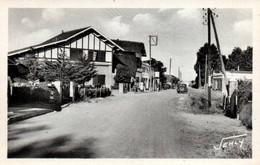 CPA - La FAUTE S/MER - Avenue De La Plage - Edition Jehly-Poupin - Autres Communes