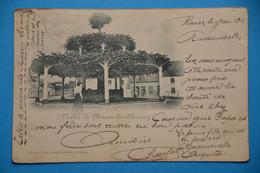 L'arbre De Macon-lez-Chimay 1901 - Chimay