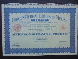 FRANCE - FORCES HYDRAULIQUES DE MEUSE - ACTION DE 500 FRS - PARIS 1933 - Hist. Wertpapiere - Nonvaleurs
