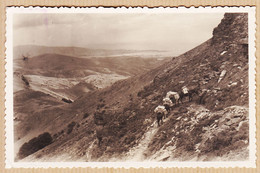 Esp403 MONTE LARUN Vera De BIDABOA-Bidasoa Cabo HIGUER FUENTERRABIA Frontera Franco-Espanola 1950s à BUSSIERES Gueret - Guipúzcoa (San Sebastián)