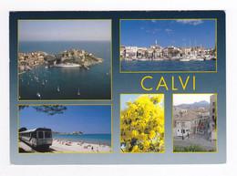 Haute Corse CALVI En 5 Vues Le Port La Ville Train SNCF La Micheline En 1992 VOIR DOS Sagaie Edition - Calvi