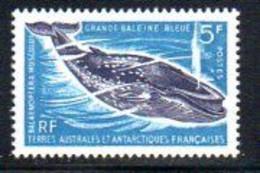 TAAF, Postes 22 ** Grande Baleine Bleue. - Französische Süd- Und Antarktisgebiete (TAAF)