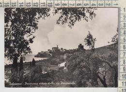 TALAMONE GROSSETO PANORAMA VEDUTO DALLA VIA PROVINCIALE 1955 - Grosseto