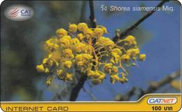 Thailand Phonecard Internet Catnet Shorea Flower 5002 - Tailandia