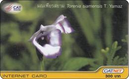 Thailand Phonecard Internet Catnet Torenia Flower 5003 - Tailandia