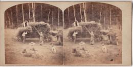 Attelage  C.1860-70 Travaux Au Champ  Photo C.8cm X2 Stereo Collée Sur Carton - Old (before 1900)