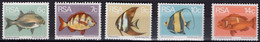 South Africa - 1973 - Tropical Fish - Mint Stamp Set - Nuovi