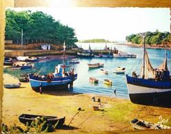 56 Morbihan CPSM CPM Le Golfe Du Morbihan Bateaux De Pêche à Sené 1965 - Sonstige Gemeinden