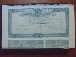 ESPAGNE - BARCELONA 1905 - SOCIEDAD FORESTAL ESPANOLA - ACTION DE 250 PESETAS - Hist. Wertpapiere - Nonvaleurs