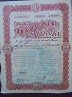 "MEXIQUE - MEXICO 1909 - CIE DE LA MINAS DE OROY PLATA "" LA PRECIOSA"" - TITRE 5 ACTIONS DE 2 PESOS - AVEC TIMBRE FISCAL - Hist. Wertpapiere - Nonvaleurs"