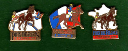 Lot 3 Pin's Prix De France - Paris - Président De La République Zamac Starpin's - Animals