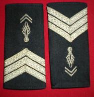 PAIRE EPAULETTES - FOURREAUX SOUPLES - MDC GD - Police & Gendarmerie