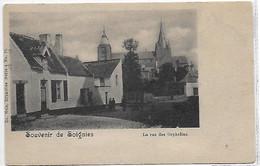 [ HAIN ]  Soignies   --   (  7  )  La Rue Des Orphelins - Soignies