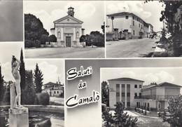 CAMALÒ-TREVISO-SALUTI DA..-4 VEDUTE-CARTOLINA VERA FOTOGRAFIA VIAGGIATA IL 16-6-1968 - Treviso