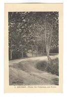 E741 - LA REUNION - Plaine Des Palmistes, Une Route - Ohne Zuordnung