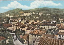 STEVENÀ-UDINE-PANORAMA-CARTOLINA VERA FOTOGRAFIA  VIAGGIATA IL 17-8-1963 - Udine