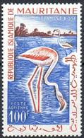 MAURITANIE - Flamant Rose - Flamingos