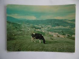 Borbona Rieti - Rieti