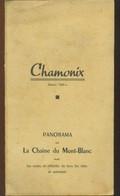 Vieux Papiers - Carte - Chamonix Panorama Sur La Chaine Du Mont Blanc - Cartes Topographiques