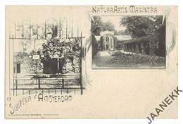 NEDERLAND - AMSTERDAM Souvenir, Natura Artis Magistra, Kunstanstalt Herz - Amsterdam