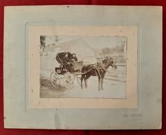 PHOTO ATTELAGE CHEVAL CALECHE VOITURE HIPPOMOBILE CARRIOLE - PHOTOGRAPHE Léon Bourgneuf à BELLEME  Bellême ORNE 61 - Antiche (ante 1900)