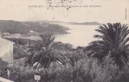 Giens (83) - Terrasse Des Palmiers Et Iles D'Hyères - Ohne Zuordnung