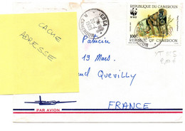 Cameroun  1988  YT825  Sur Lettre  WWF  Singe  Papio Leucophalus  Animaux Mammifères - Kamerun (1960-...)