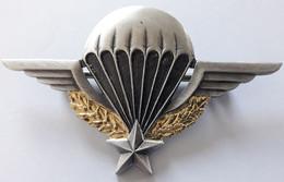Insigne PARA Avec N° Brevet Certificat Parachutiste - Marine