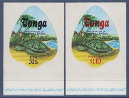 2 Blocs 1 Timbre Adhésif Neuf Tonga Protection Des Espèces En Danger, Les Tortues - Schildkröten
