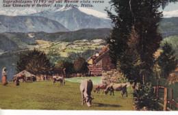 BOLZANO-SAN GENESIO - Bolzano (Bozen)