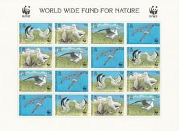 ANTARCTIQUE - Tristan Da Cunha 1999 Albatros Avec Variété - Yv. 623/626 ** Feuille - Non Classés