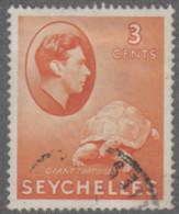 Seychelles - #127 - Used - Seychellen (1976-...)