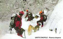 USATE ›  VVFF - Unità Cinofile, Ricerca Dispersi - Pubbliche Figurate Ordinarie