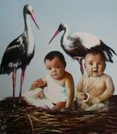 ALSACE ENFANTS Bébés Cigognes FRANCE Children Babies Storks - Scènes & Paysages