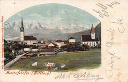 BISCHOFSHOFEN SALZBURG AUSTRIA~1901 FRANZ HUEMER POSTCARD 49673 - Other
