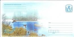 Belarus 2010 Fauna Bird Ducks Postal Stationry Cover - Belarus
