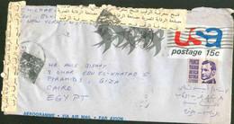 USA Used Aerogramme 1974 Send To Egypt - Brieven En Documenten