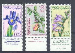 Morocco 1965 Flowers MNH - Marocco (1956-...)