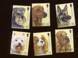 2001. GUERNSEY. Jolie Série 6 Val - Hunde