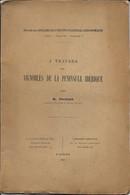 A Travers Les VIGNOBLES De La PENINSULE IBERIQUE - Books, Magazines, Comics