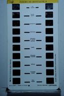 LESTRADE :  1767   FLEURS DE MONTAGNE  3 - Visionneuses Stéréoscopiques